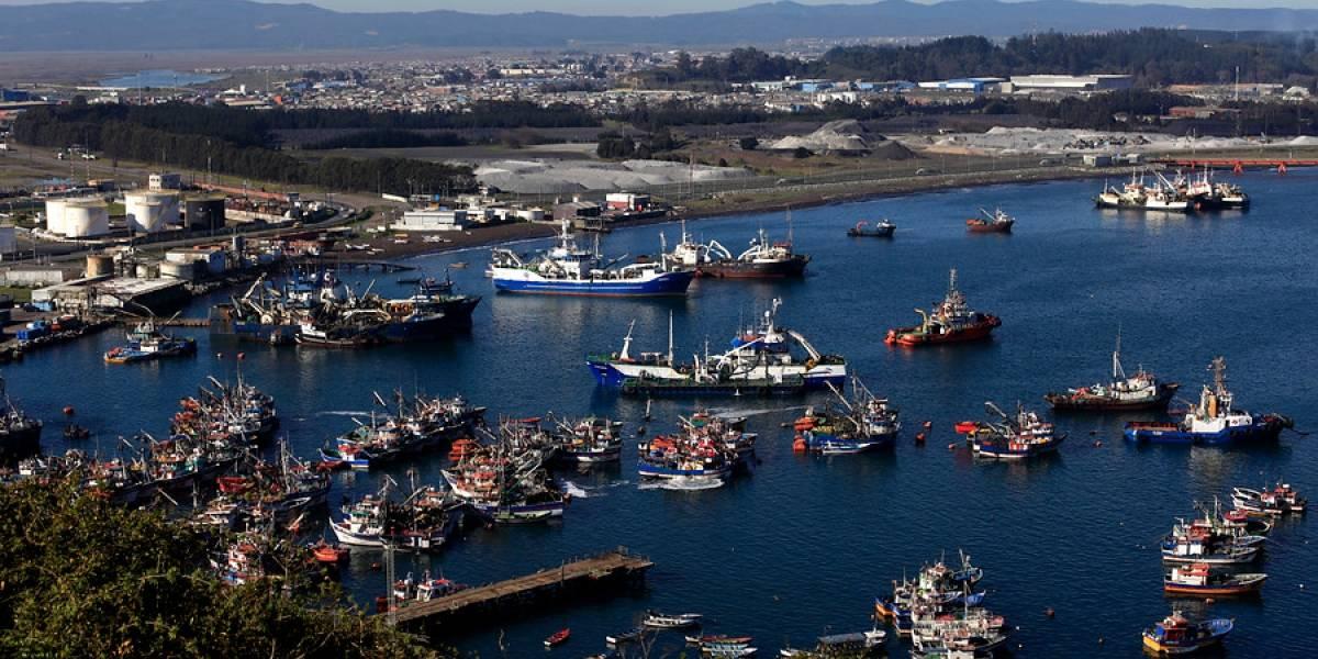 Llaman a diversificar el sector pesquero para aumentar la competitividad