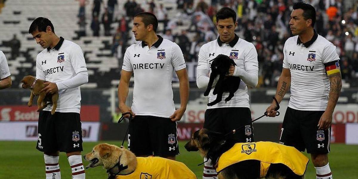 Sudamérica alabó el gesto de Colo Colo de ingresar con perritos a la cancha