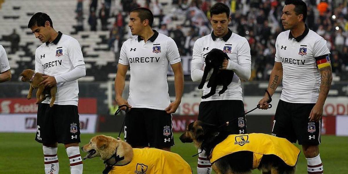 Trastienda del Monumental: La presencia de Morales, estatua para Chamaco y los perros marcaron el debut de Colo Colo