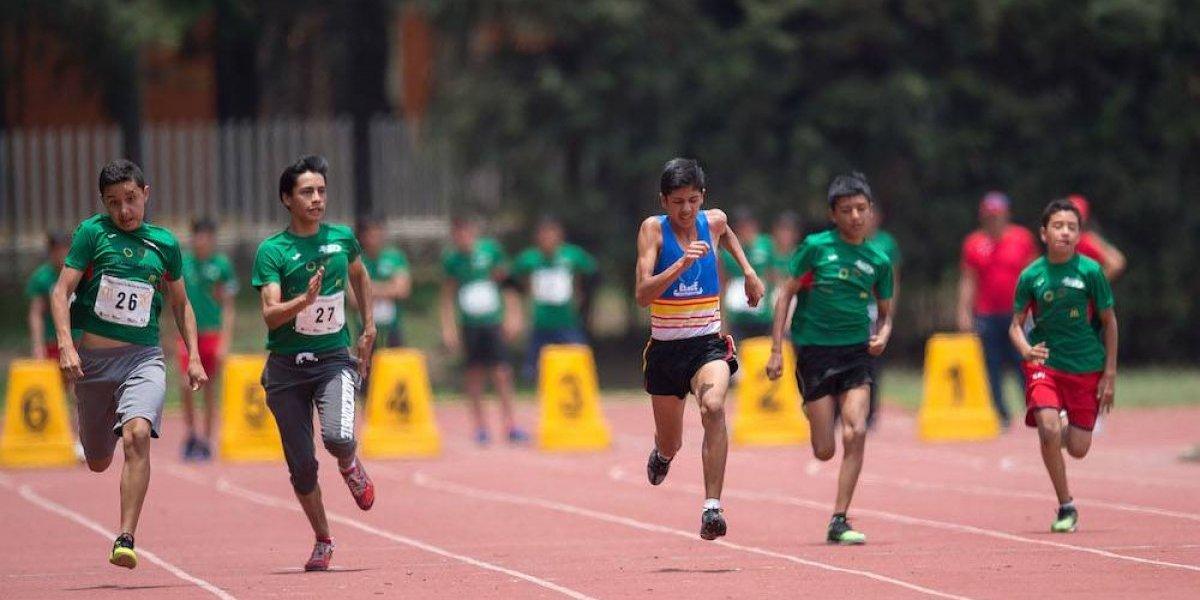 ¿Qué necesita un atleta para tener un rendimiento óptimo?