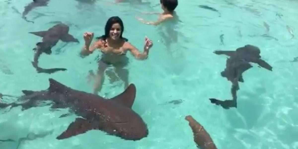 Vanessa De Roide nada con tiburones en Bahamas