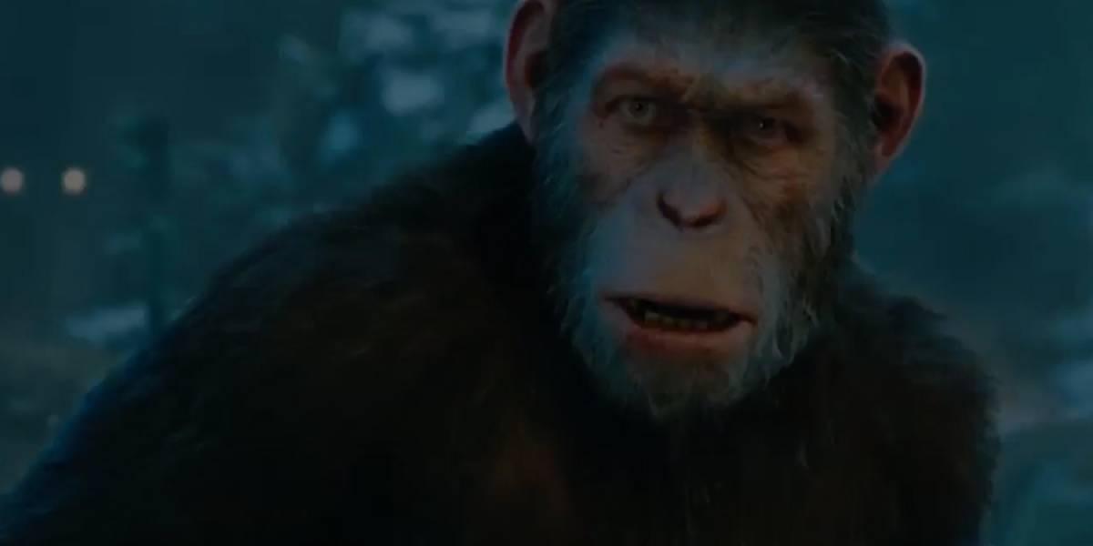 """¡Se viene el estreno en Guatemala de """"El Planeta de los Simios: La Guerra""""!"""