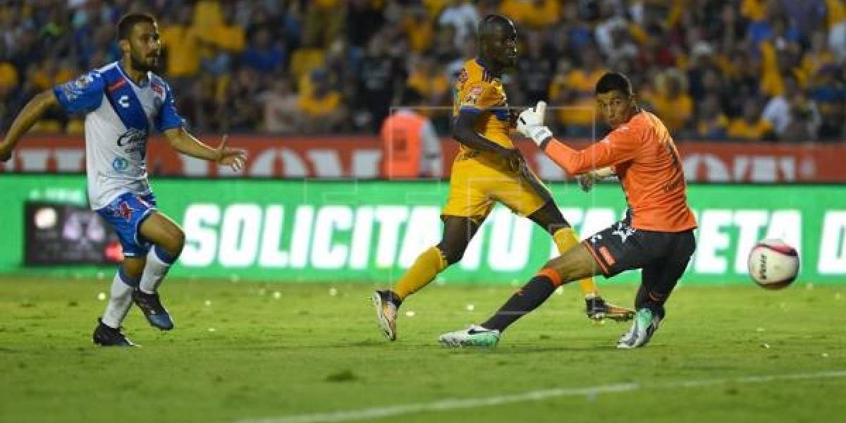 Los Tigres de Enner Valencia perdieron ante Zacatepec
