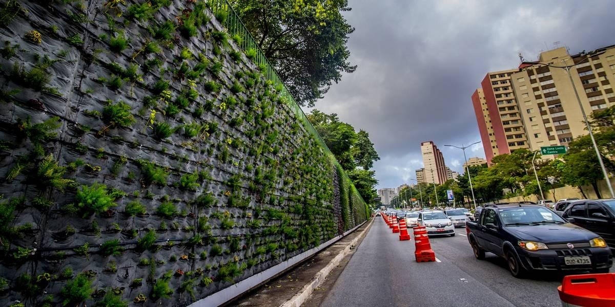 Muro verde da Avenida 23 de Maio apresenta falhas na manutenção ...