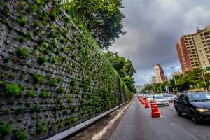 MP entra com ação civil contra jardins verticais em São Paulo