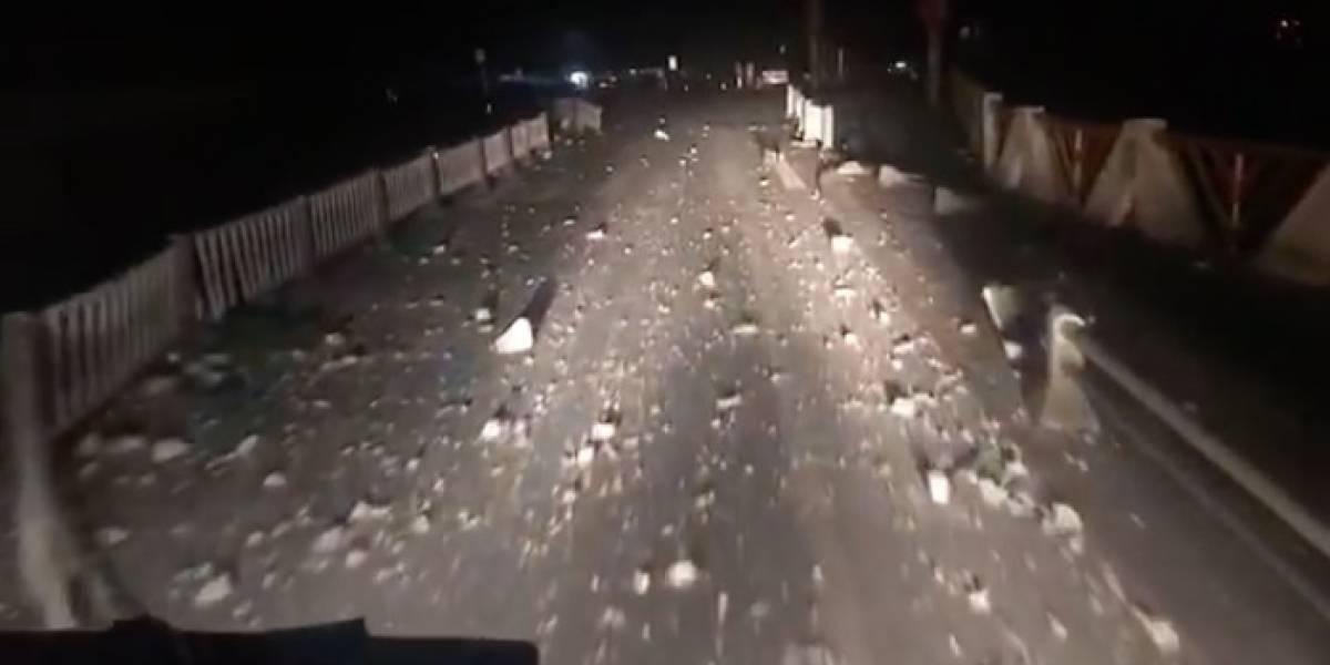 Terremoto en China deja al menos 5 muertos y 60 heridos