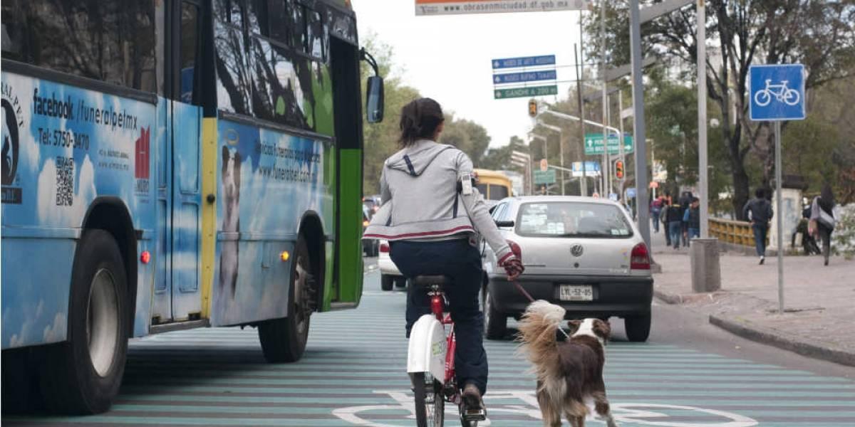 Sin ciclovías, riesgo de que se invada carril de MB-Reforma
