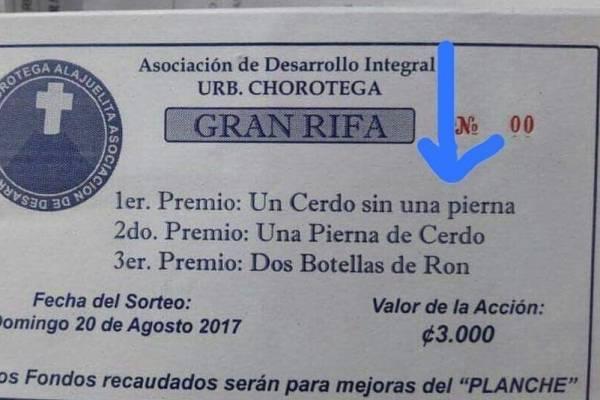 Rifa Chancho