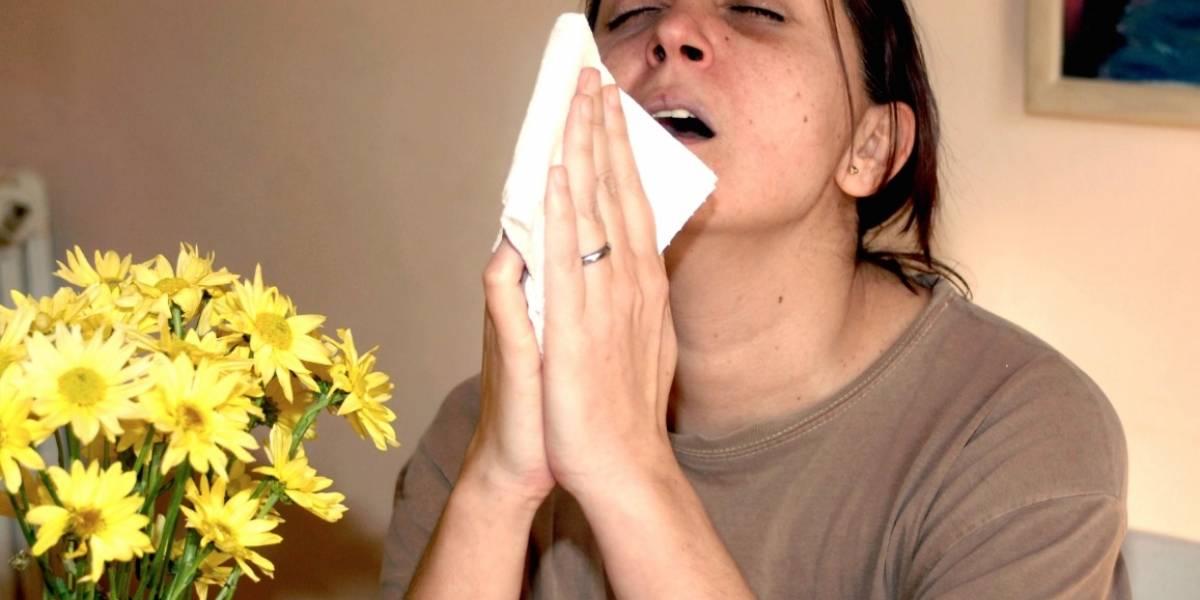 ¿Qué es una casa enferma y cómo curarla?