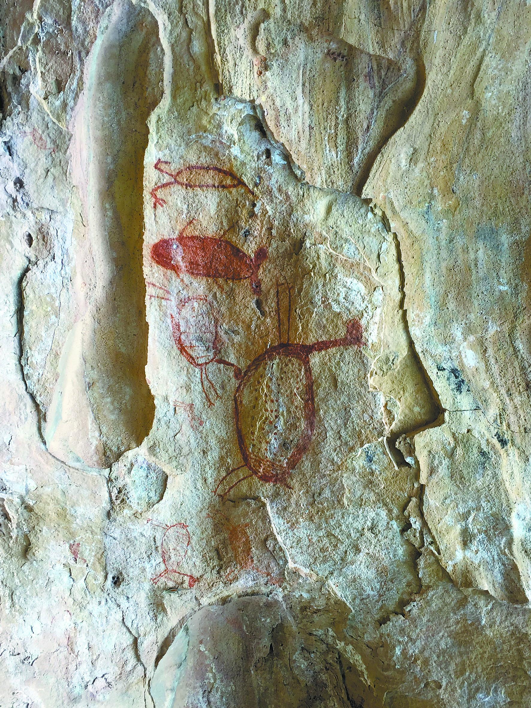 Parque tem a maior quantidade de pinturas rupestres do mundo | Divulgação