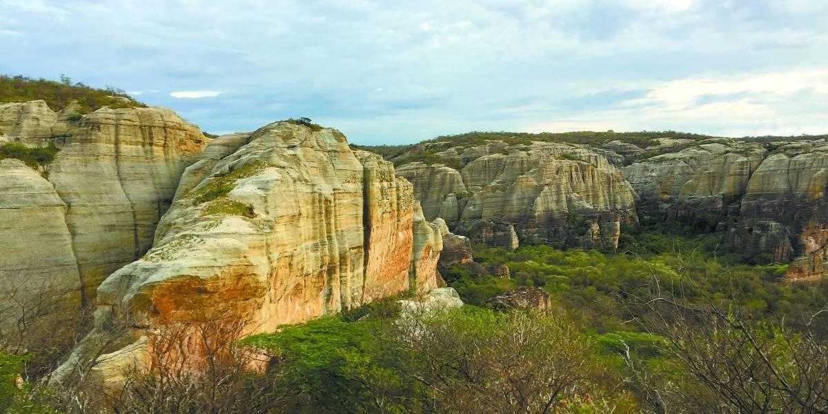 Serra da Capivara: um lugar mágico e cheio de grandes descobertas