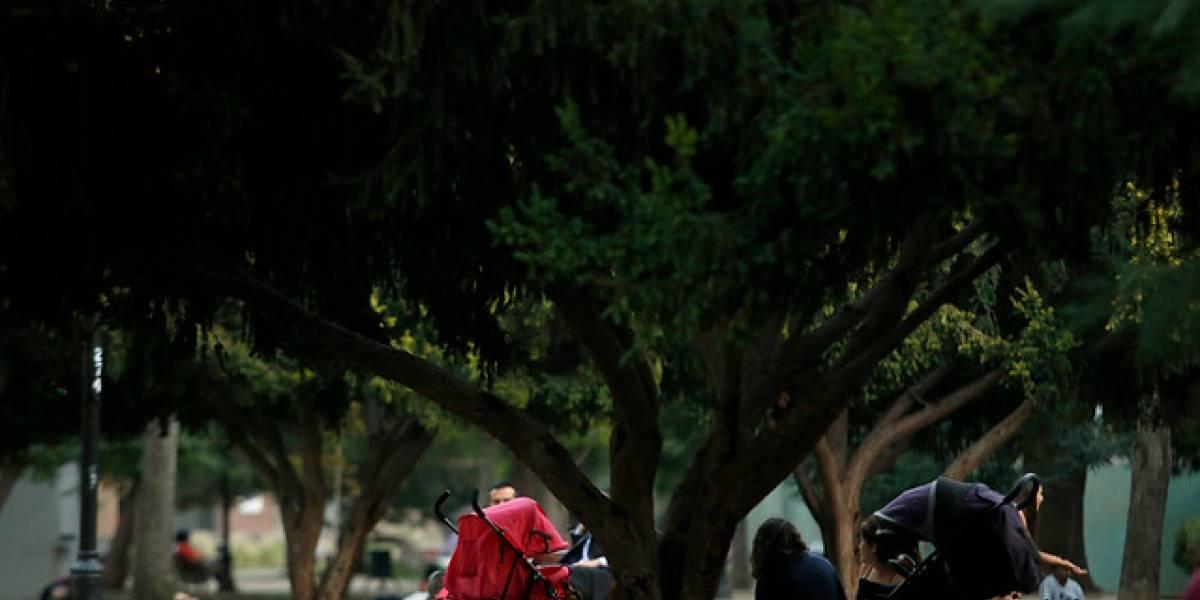 Alcalde de Santiago evalúa cerrar Parque Forestal por las noches