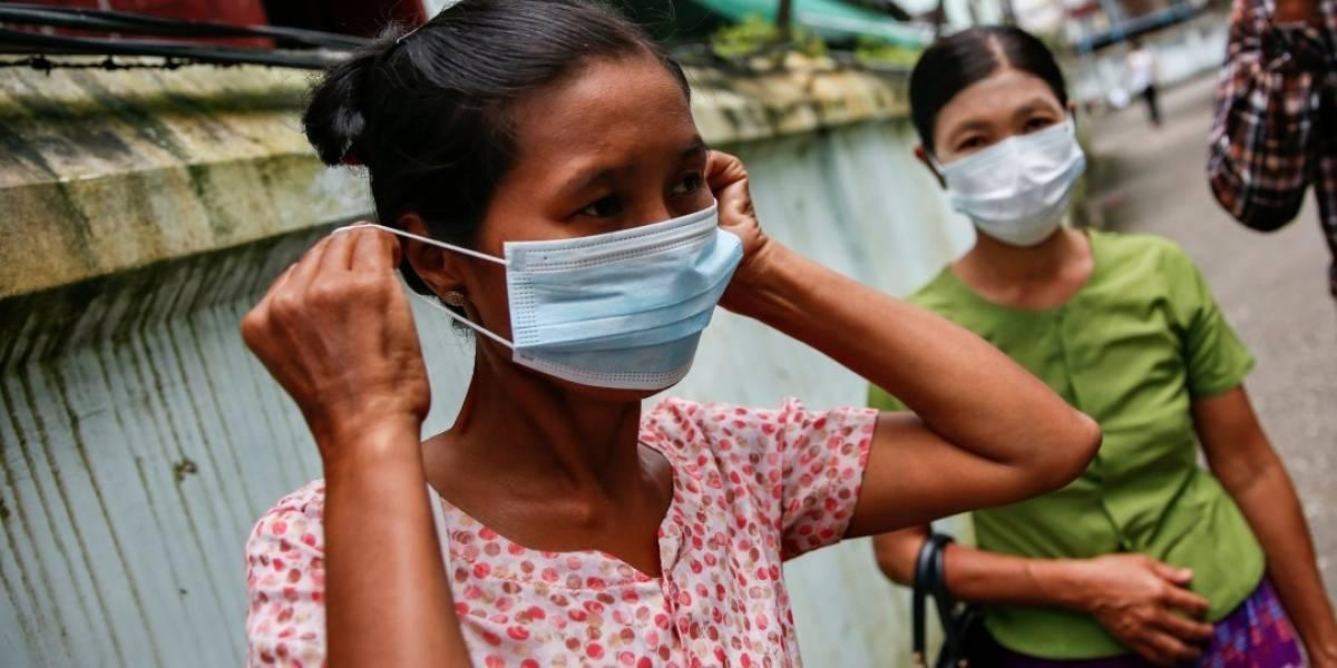 Expertos advierten sobre posible llegada de cuatro virus a Colombia