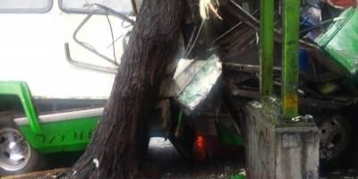 Microbús choca contra árbol por exceso de velocidad en Calzada de Tlalpan