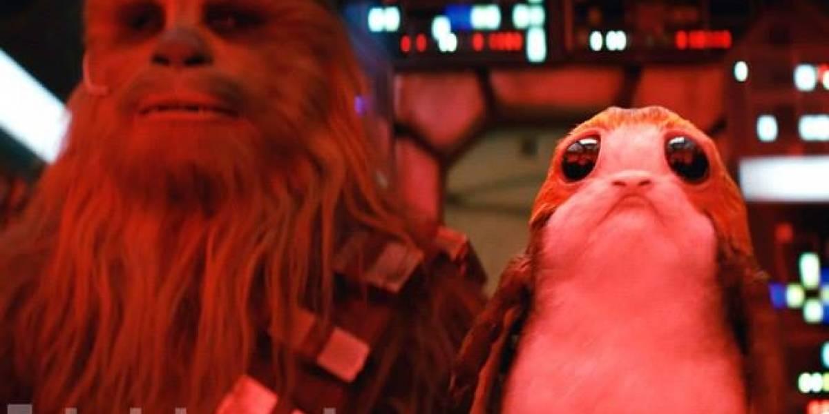 Revelan las nuevas criaturas que viven con Luke Skywalker en 'El último jedi'