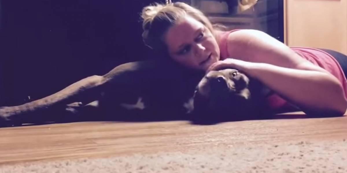 Mulher treina cão para protegê-la durante convulsão
