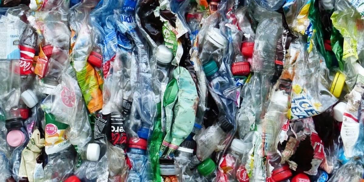 'Plastianguis' busca promover el reciclaje en la Ciudad de México