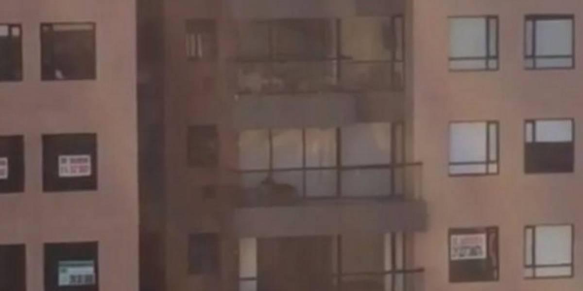 Por Twitter denuncian que un perrito lleva cinco días encerrado en el balcón de un edificio de Bogotá