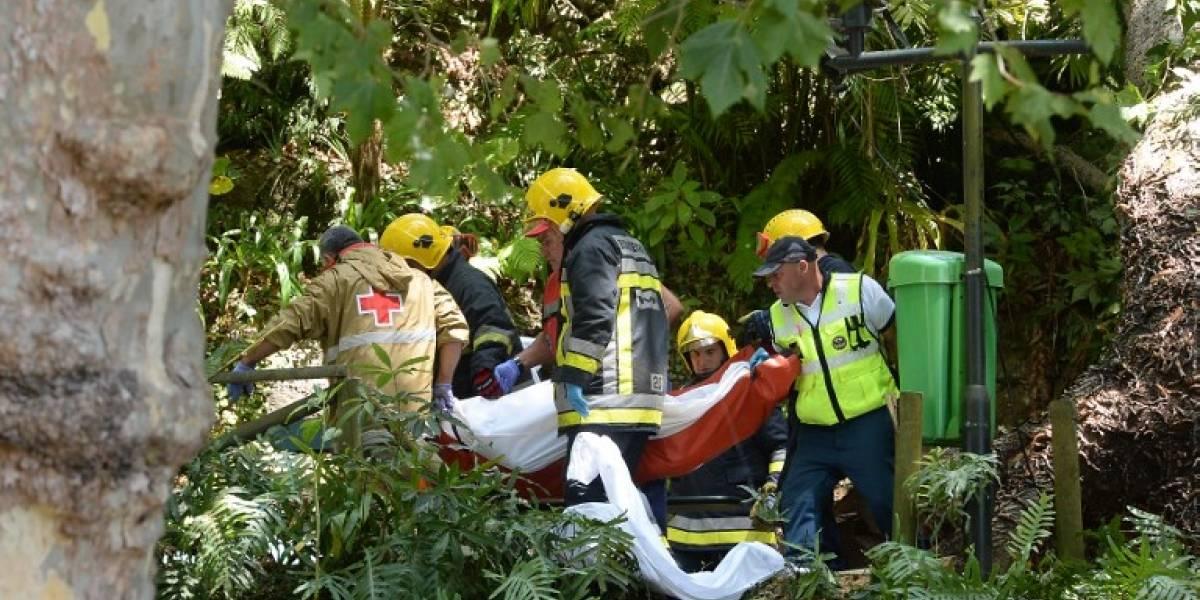 Portugal: caída de árbol deja 12 muertos y 50 heridos en festividad religiosa