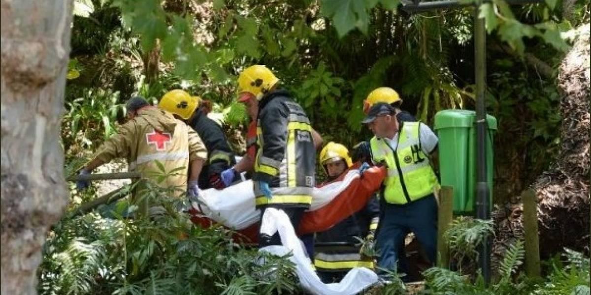 Trece muertos y 50 heridos tras caer un árbol durante una procesión en Portugal
