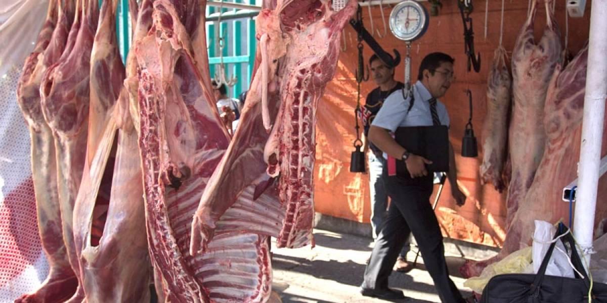 Buscan penalizar el maltrato de animales en rastros y mataderos
