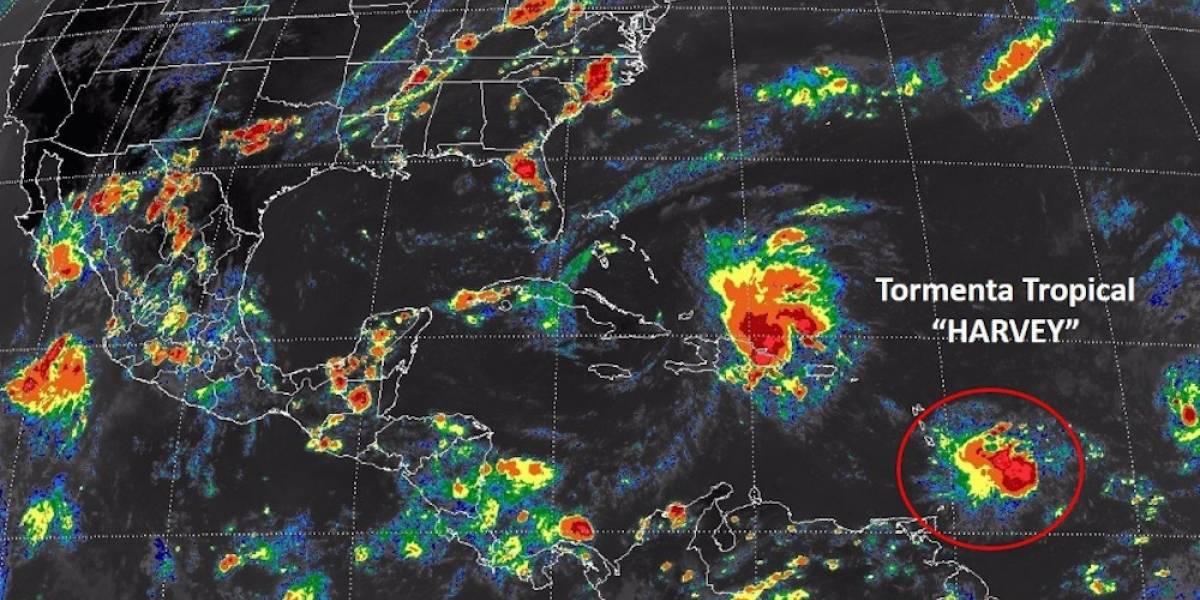 Tormenta tropical 'Harvey' se acerca lentamente a Quintana Roo