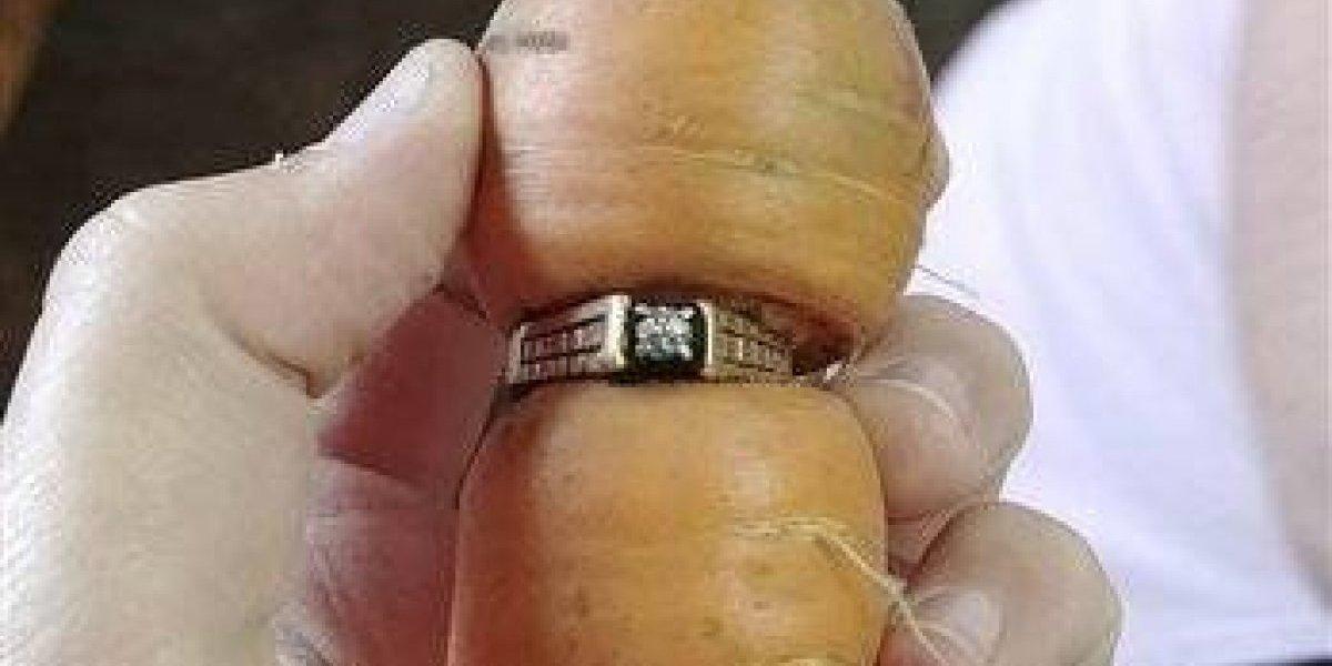 Encuentra en una zanahoria anillo extraviado hace años