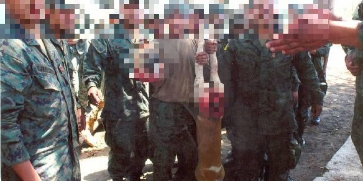 Fuerzas Armadas aclaran fotos de perro decapitado