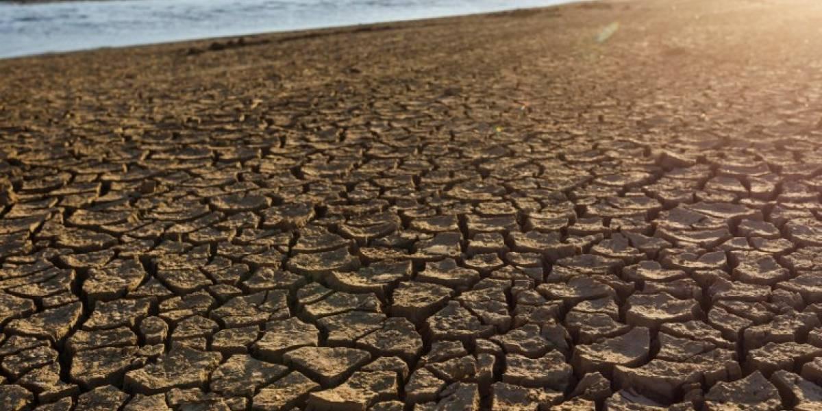 Pesimista diagnóstico científico: el mundo perdió la oportunidad de evitar el peligroso calentamiento global