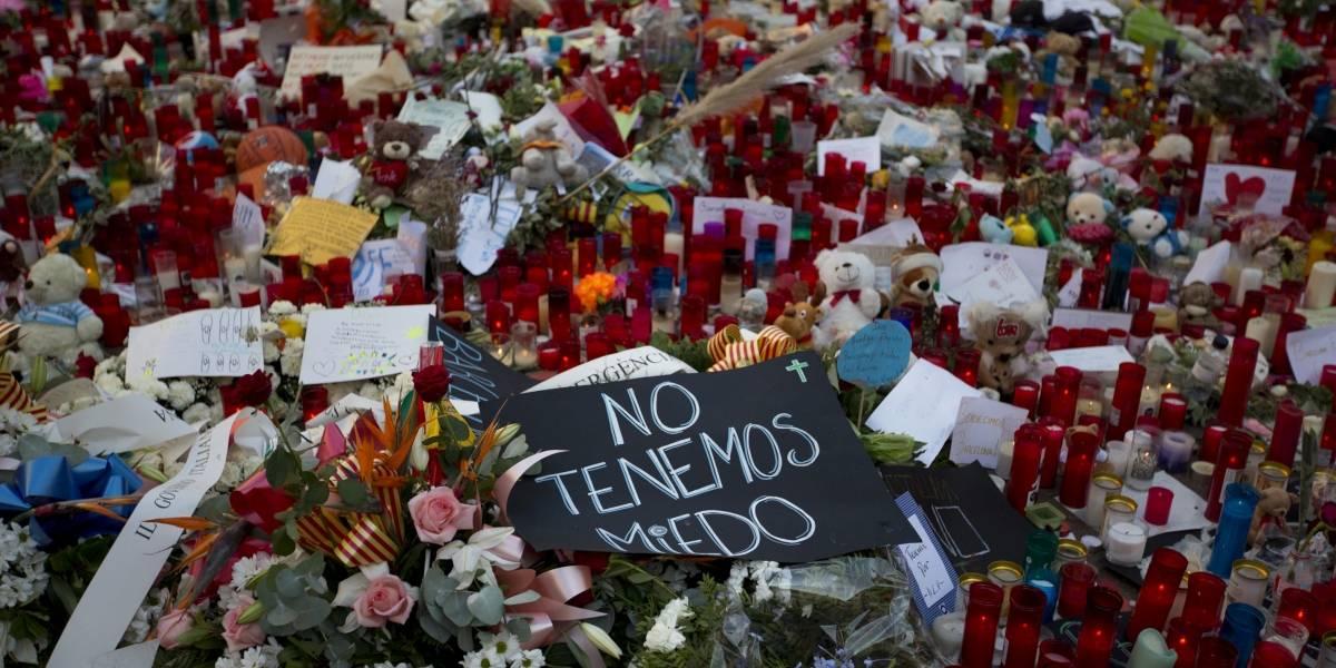 Policía desmantela células autoras de ataques en España