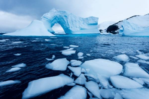 Microbios de lagos salados de la Antártida comparten ADN para sobrevivir