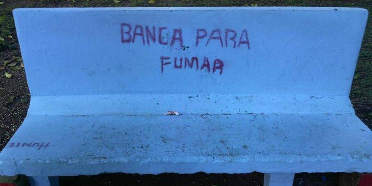 Vuelven a revitalizar bancas del parque San Sebastián que fueron manchadas con pintas