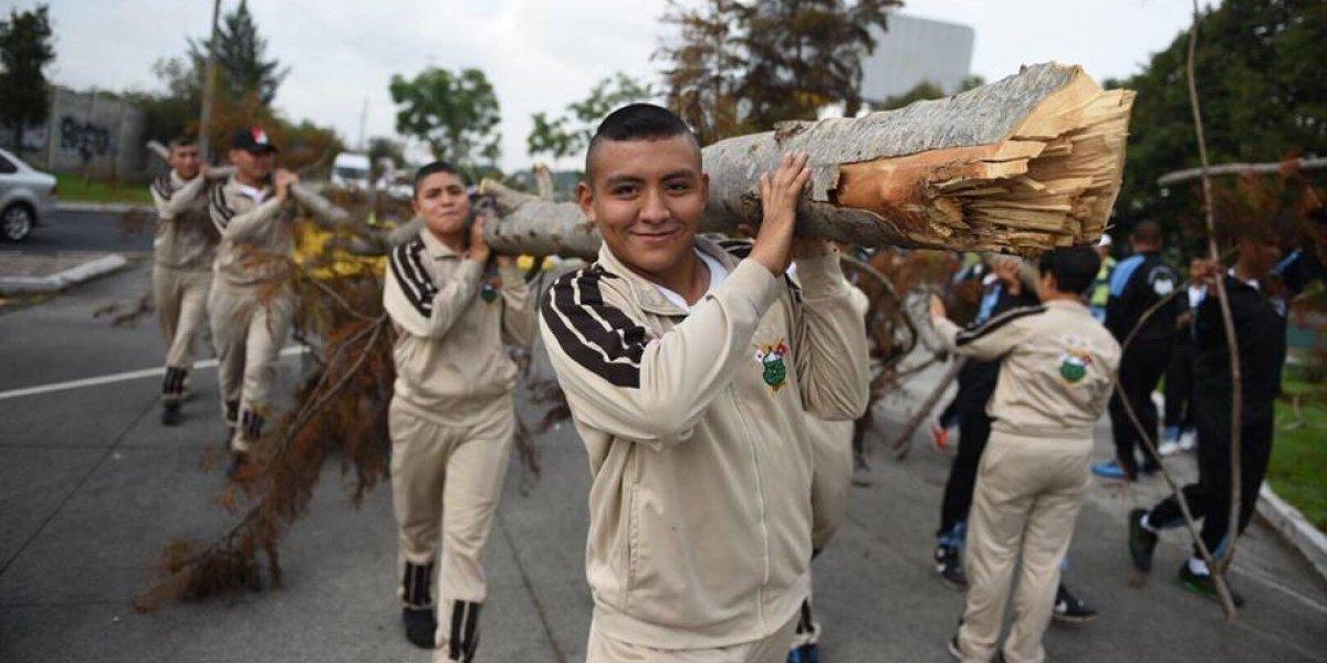 EN IMÁGENES. Voluntarios reforestan área del bulevar Juan Pablo II en donde fueron talados 52 árboles