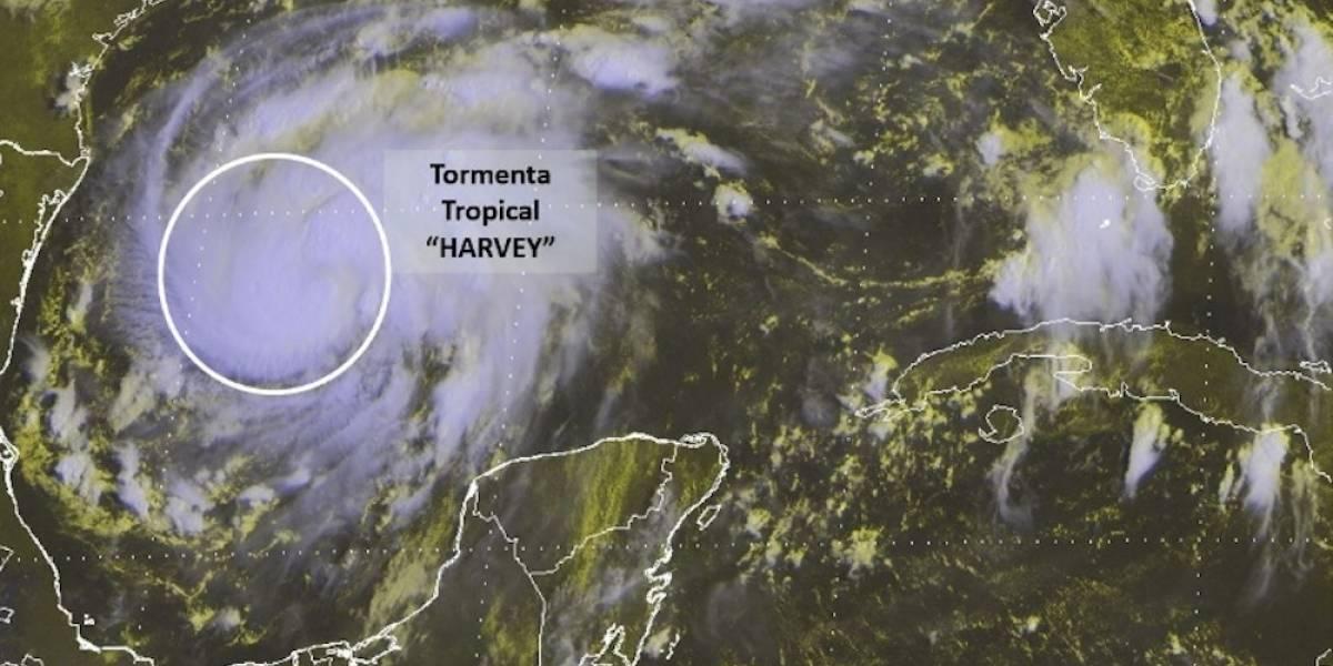 'Harvey' toma fuerza en el Golfo de México; podría convertirse en Huracán