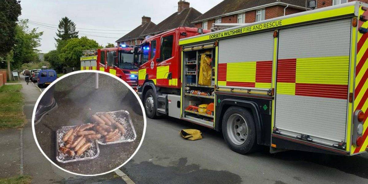 Bomberos salvan a 18 cerditos de incendio, luego se los comieron
