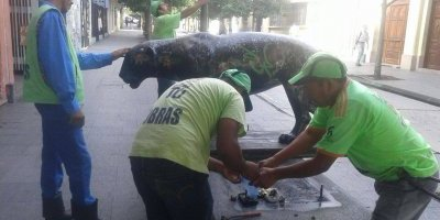 Retiran jaguares del paseo La Sexta
