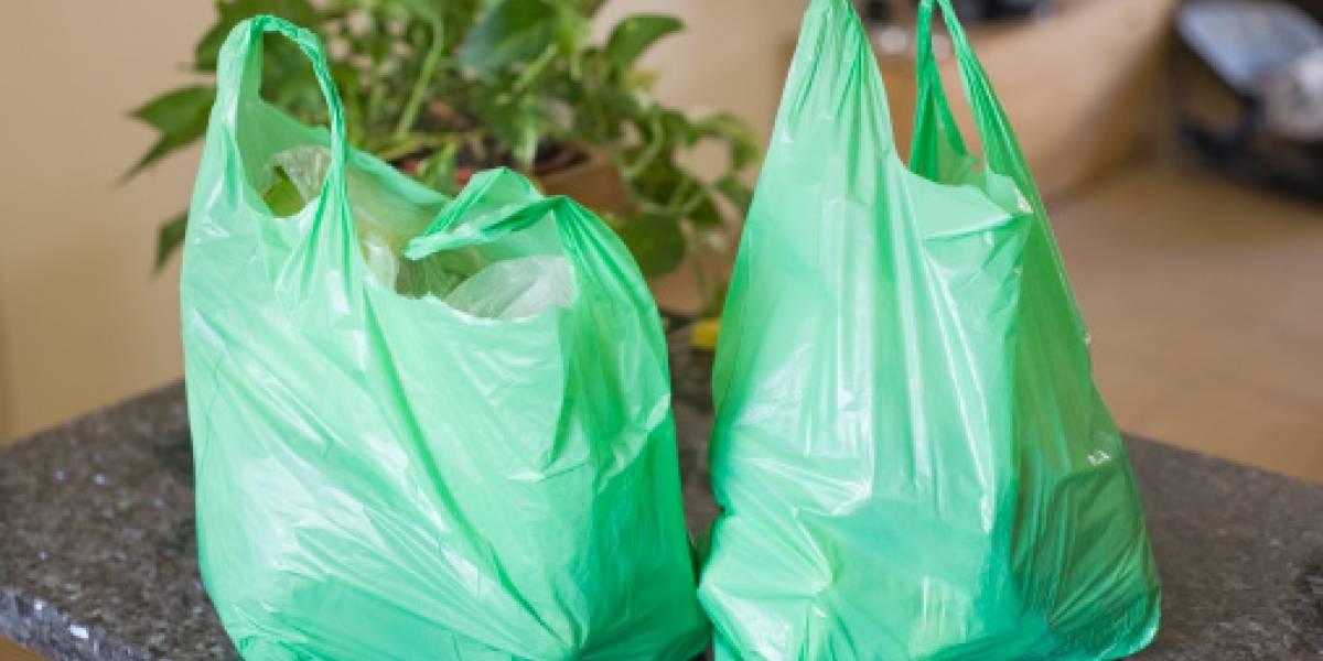 Se prohiben las bolsas de plástico en Kenia