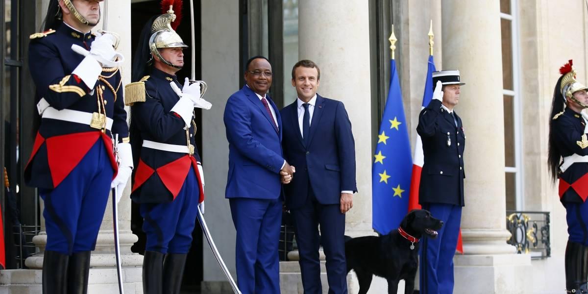 Macron adopta un perro de la Sociedad Protectora de Animales