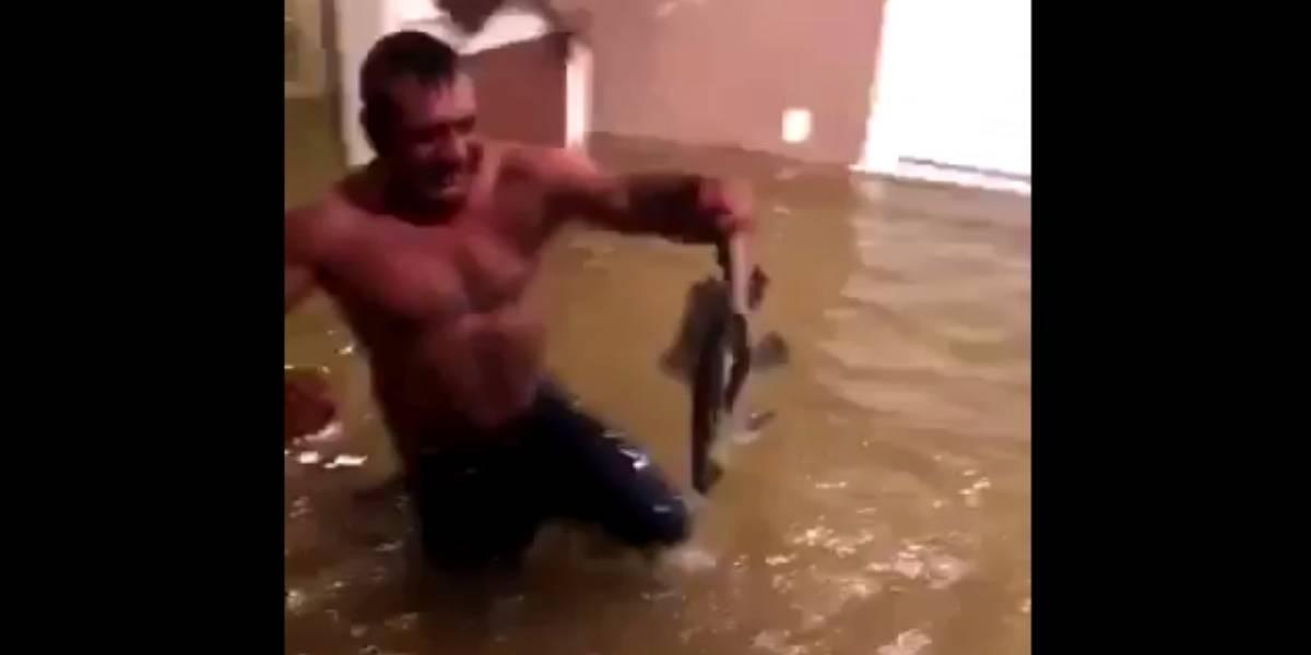 'Harvey' le llevó peces a su casa