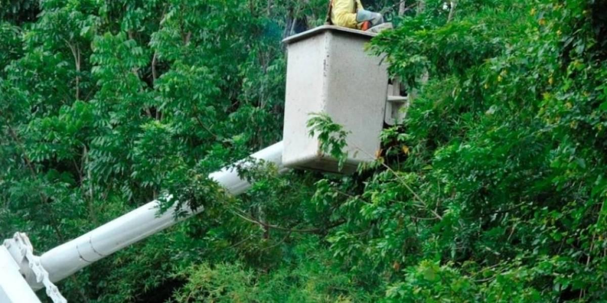 138,000 abonados de San Juan todavía están sin energía eléctrica