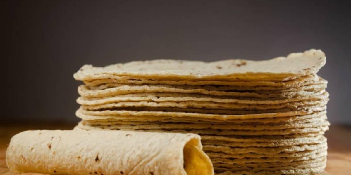 Especialistas recomiendan el consumo de tortilla de maíz en niños