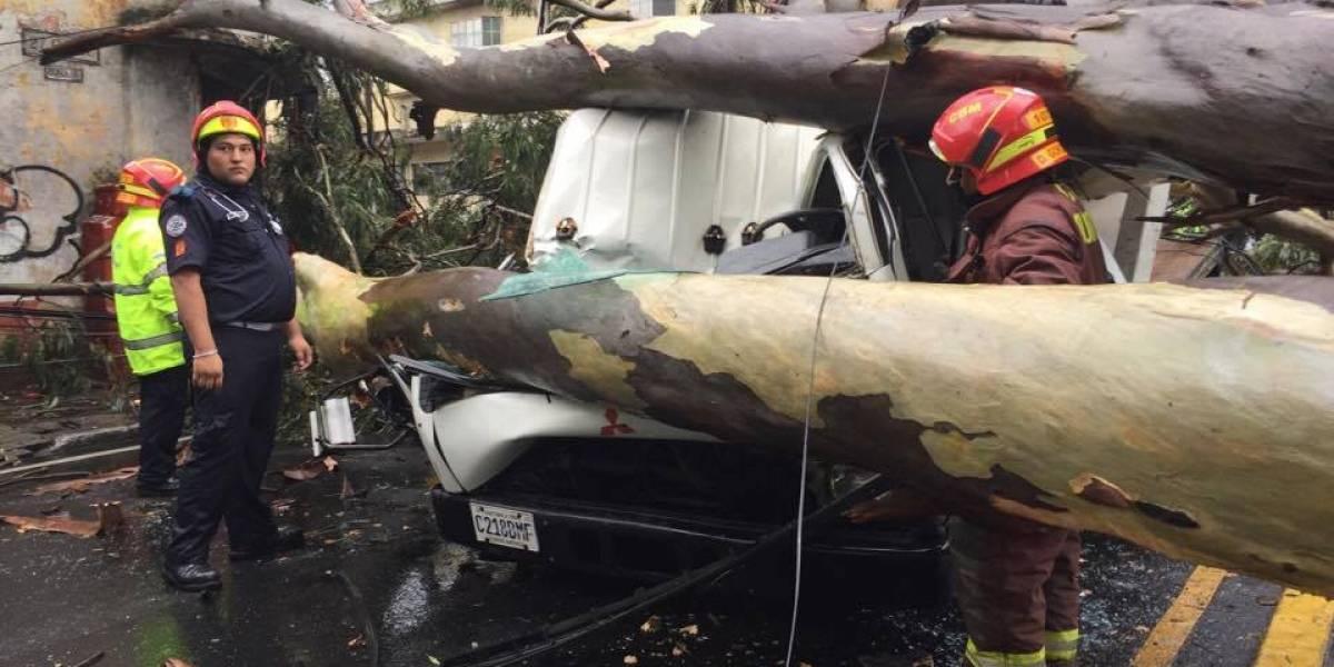 Árbol cae y destruye vehículo en zona 5; el tránsito se complica