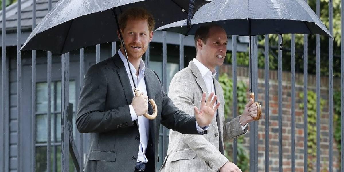 Diana de Gales fue recordada por sus hijos en sobria ceremonia