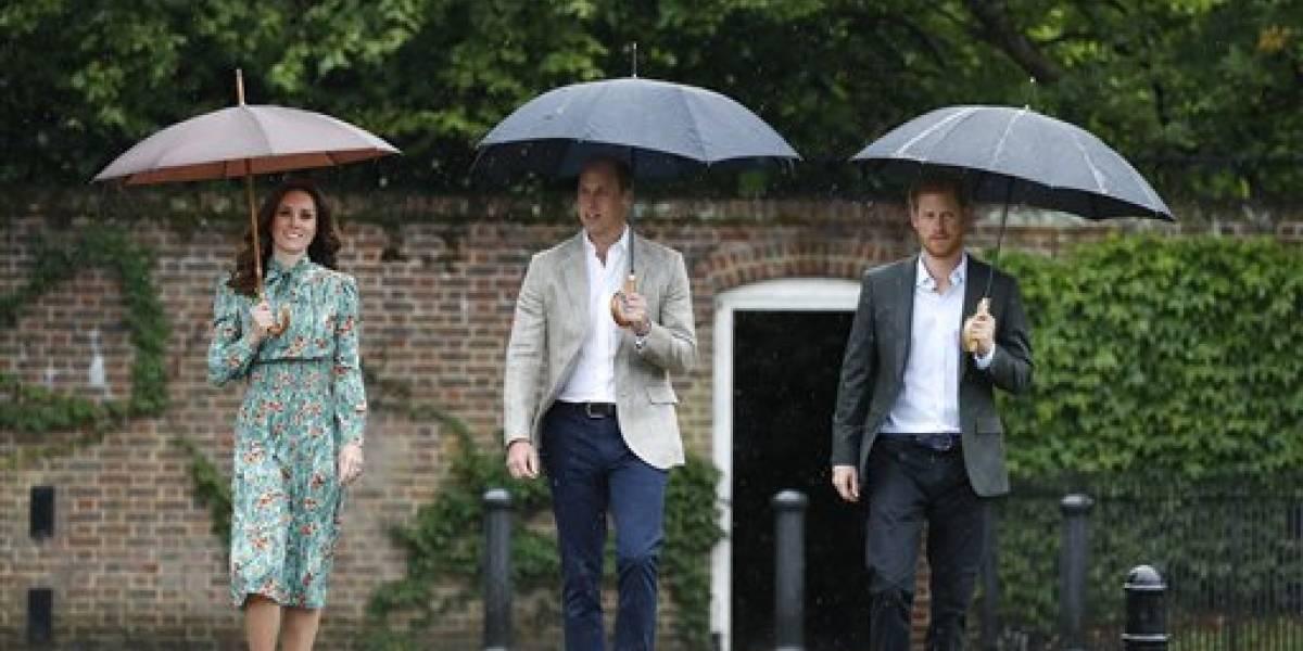 Hijos de la princesa Diana honran su trabajo benéfico