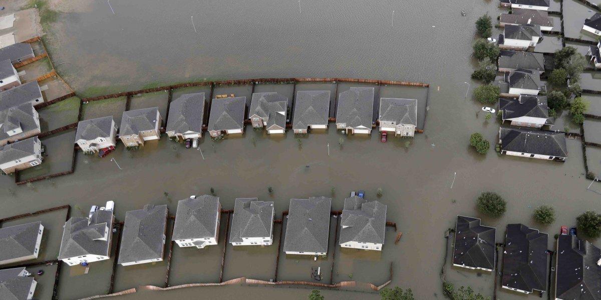 Recuperan cuerpos de seis miembros de familia de Houston