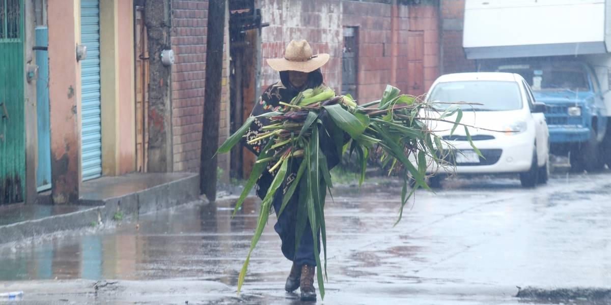 Protección Civil de Michoacán alerta por remanentes de tormenta tropical Lidia