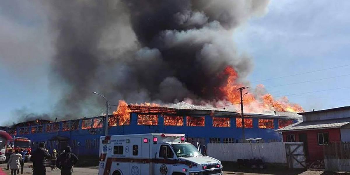 Arauco: incendio destruyó liceo en Los Álamos y dejó a mil estudiantes sin clases