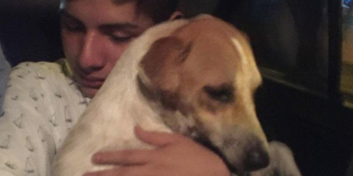 Joven adopta a un perro después de irse de fiesta