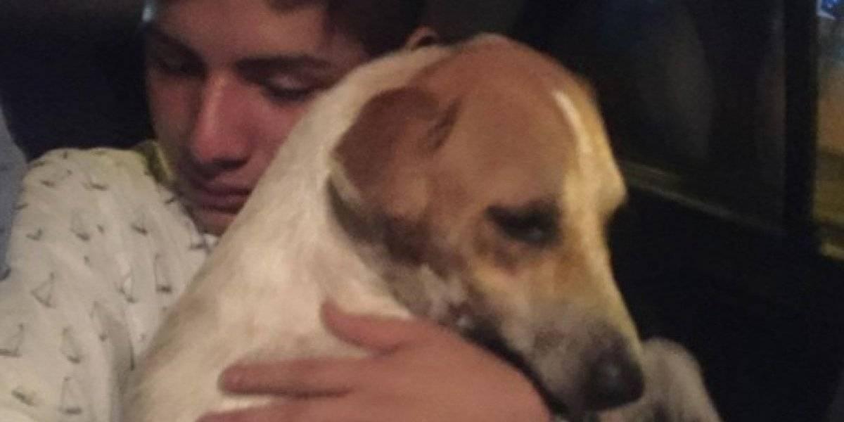 Homem sai bêbado de festa, adota cachorro e emociona web