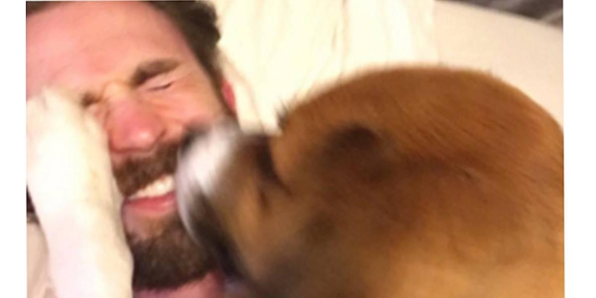 Chris Evans relembra momento fofo em que adotou seu cão Dodger; assista